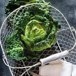 Wirsing Kohl in weissem altem Drahtkorb Brassica oleracea convar