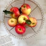 Bio Apfel-Korb Landhaus Schale Shabby chic Gedicht