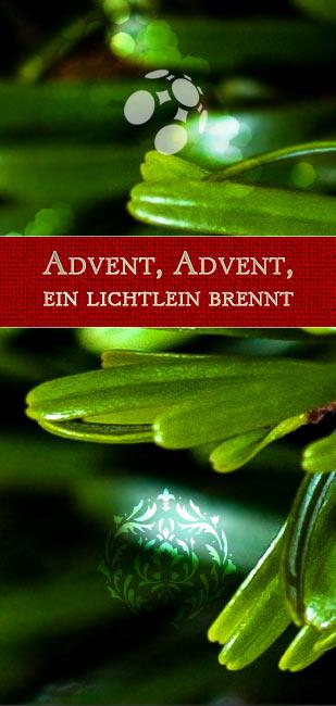 Advent, Advent Adventskranz Tannenzweige
