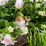 Gartenzwerg Schnecke Glockenblumen