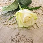 Weisse Rose Muttertag