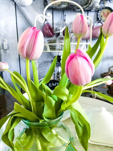 Frühlings-Blumen rosa Tulpen in Vase Shabby Lenz
