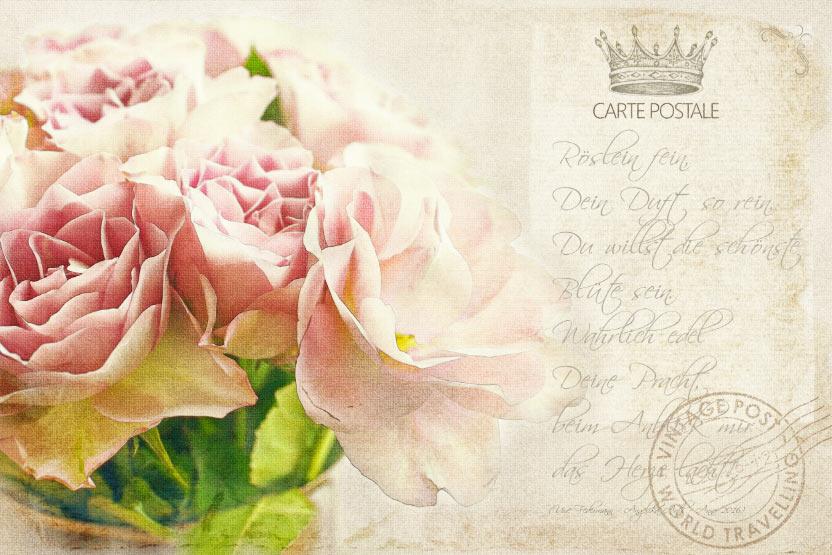 Vintage Rosen Postkarte