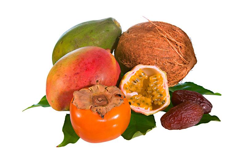Tropische Früchte - Persimon, Mango, Papaya, Kokosnuss, Datteln, Maracuja, Passionsfrucht, Kaki, Sharonfrucht