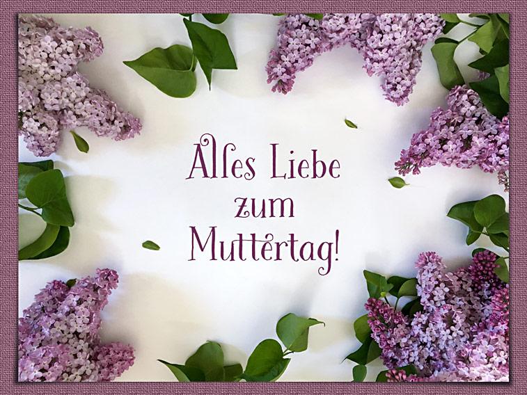Flieder Blumenbild Muttertagsgruss