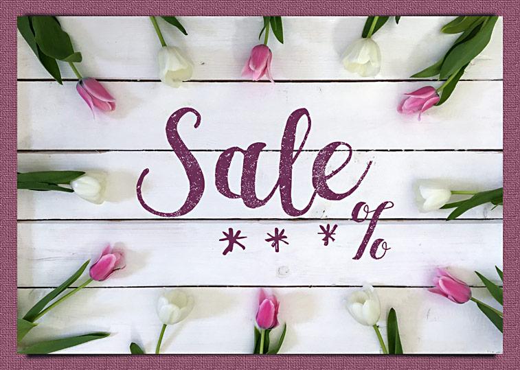 Sale Prozente Tulpen Frühlingsblumen