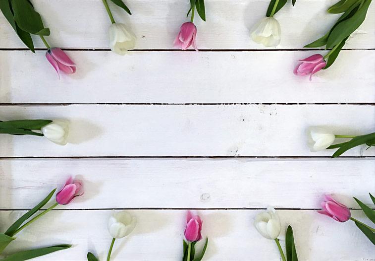 Tulpen Blumenbild Platz für Text auf Holzwand