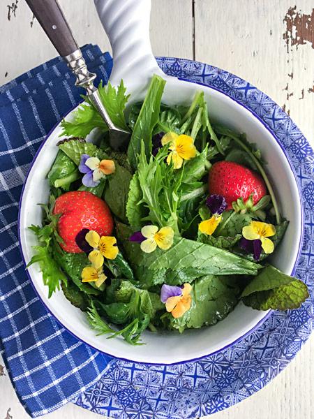 Frühlingssalat Blüten Erdbeeren