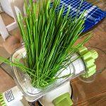 Weizengras entsaften Graspresse