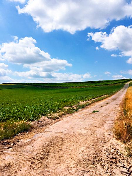 Grüne Felder blauer Wolkenhimmel