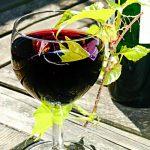 Rotwein-Glas Weinreben