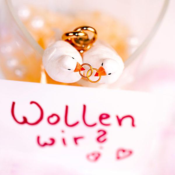 Heiratsantrag Hochzeit Tauben Eheringe