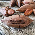 Pili-Nüsse Pili Nusskern Philippine Islands