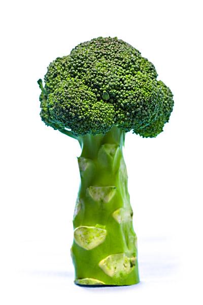 Brokkoli Baum
