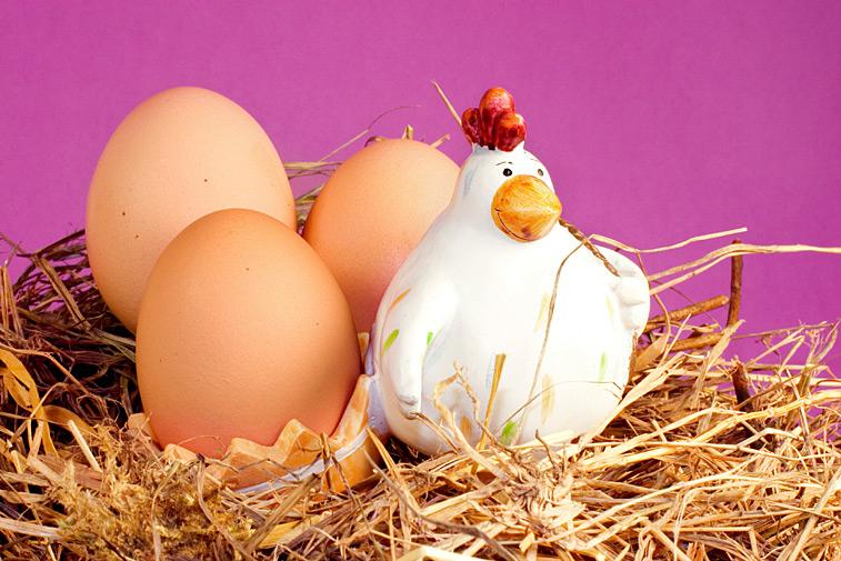 Hühner Eier Huhn Stroh Osterdeko