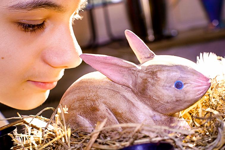 Kinder Junge Osterhasen Ostern Osternest