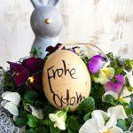 Ostereier Osterhase Frohe Ostern Stiefmütterchen Frühlings-Blüten Osternest