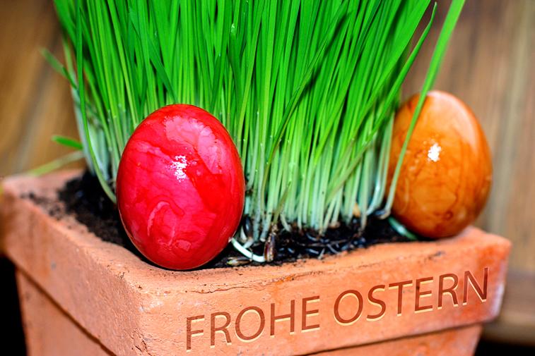 Versteckte Ostereier verstecken Eiersuche Ostergras