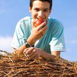 Junge beim Apfel essen Heu Stroh Natur