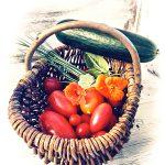 Tomaten Kapuzinerkresse Zucchini Sauerampfer Schnittlauch Kräuter Korb Nostalgie Shabby