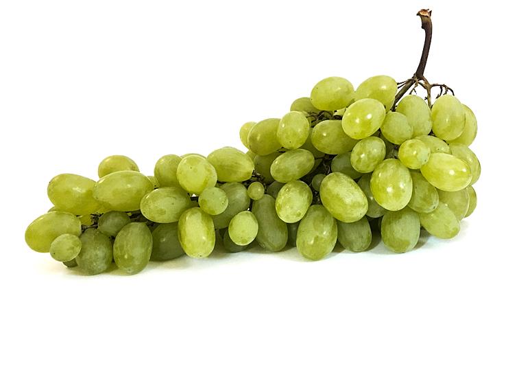 Weintrauben grüne bio Trauben Rebe