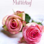 Alles Liebe zum Muttertag romantische Rosen Muttertags-Gruss