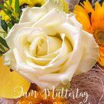 Zum Muttertag weisse Rosen Gerbera die besten Wünsche