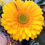 Muttertag Gelbe Gerbera-Blüte Blumenstrauß