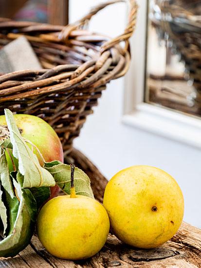 Gelbe Nashi Birnen Apfel Erntekorb Obstkorb